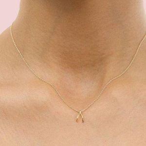 Dainty gold wishbone wish necklace